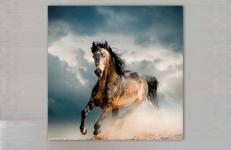 Картина Pintdecor Cavallo g1560